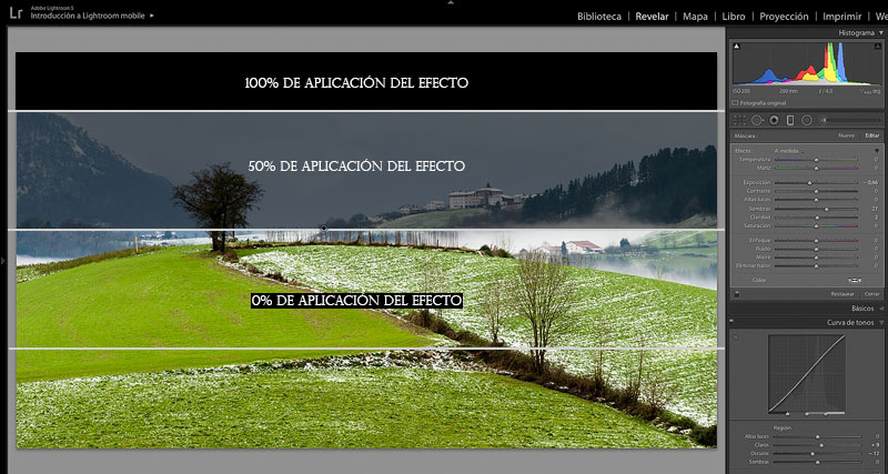 filtro degradado lightroom- zonas